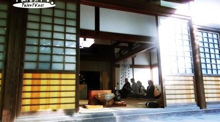 ประวัติชาเขียวญี่ปุ่น